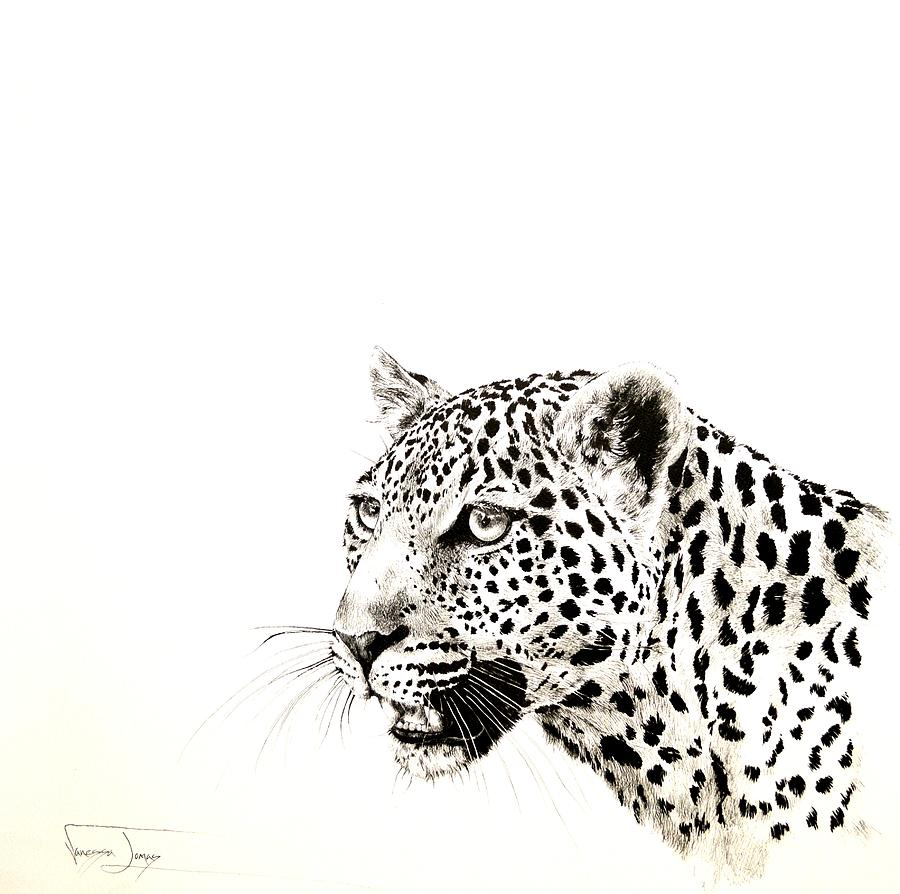 Sa Wildlife Painting - Leopard Portrait by Vanessa Lomas