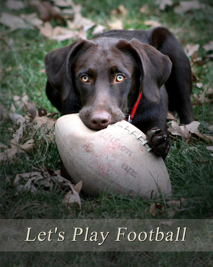 Lets Play Football Photograph  - Lets Play Football Fine Art Print