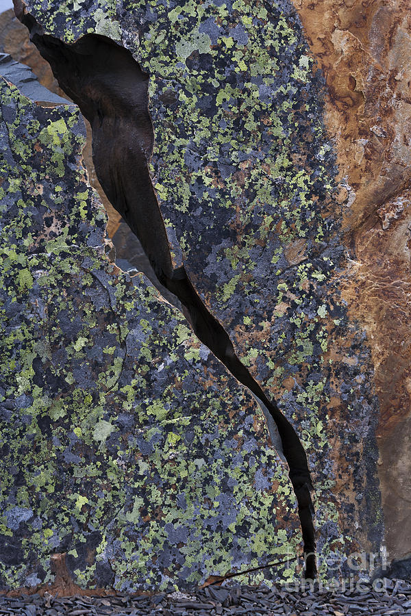 Lichen On Granite Photograph