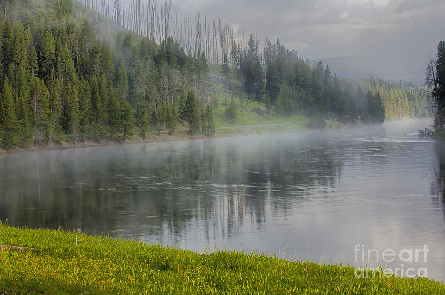 Lifting Fog On The Yellowstone River Photograph