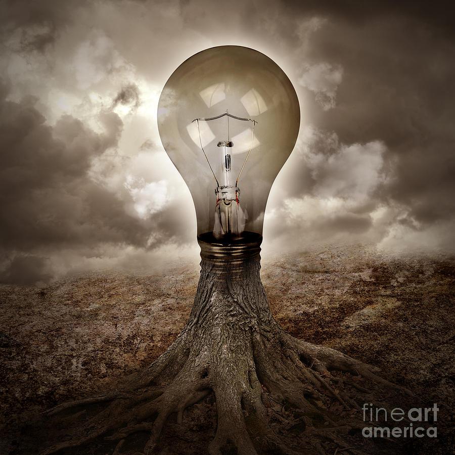 Bulb Photograph - Light Bulb Growing An Idea In Nature by Angela Waye