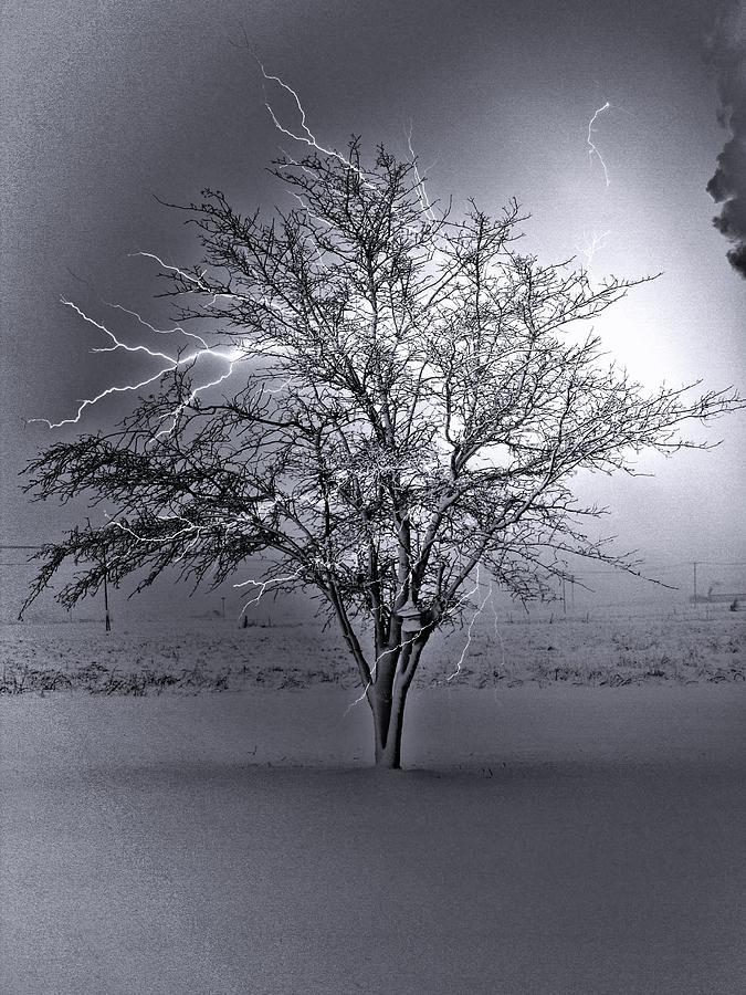 Lighten-up Photograph