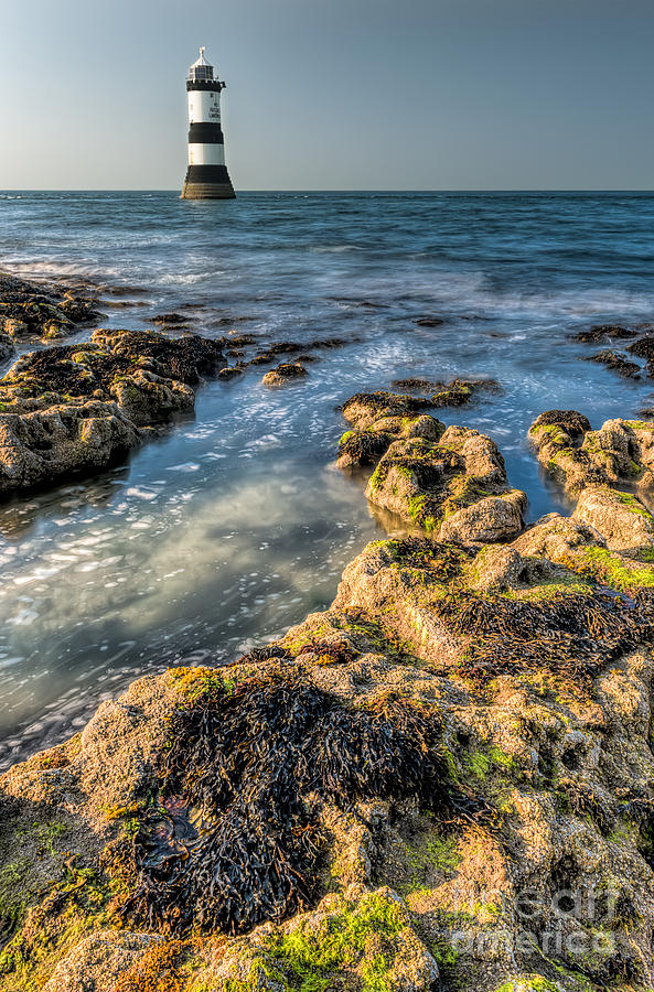 Lighthouse Rocks Photograph  - Lighthouse Rocks Fine Art Print