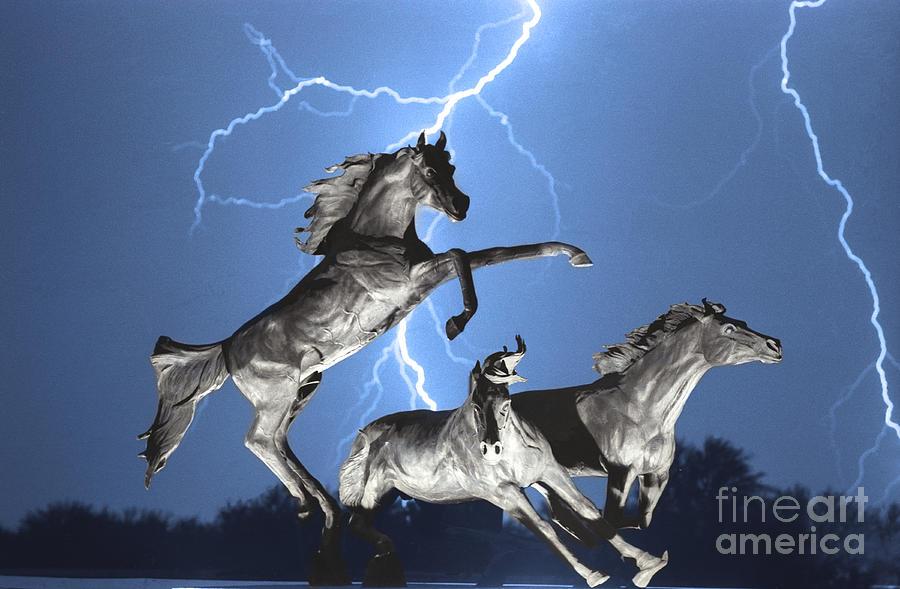 Lightning At Horse World Bw Color Print Photograph