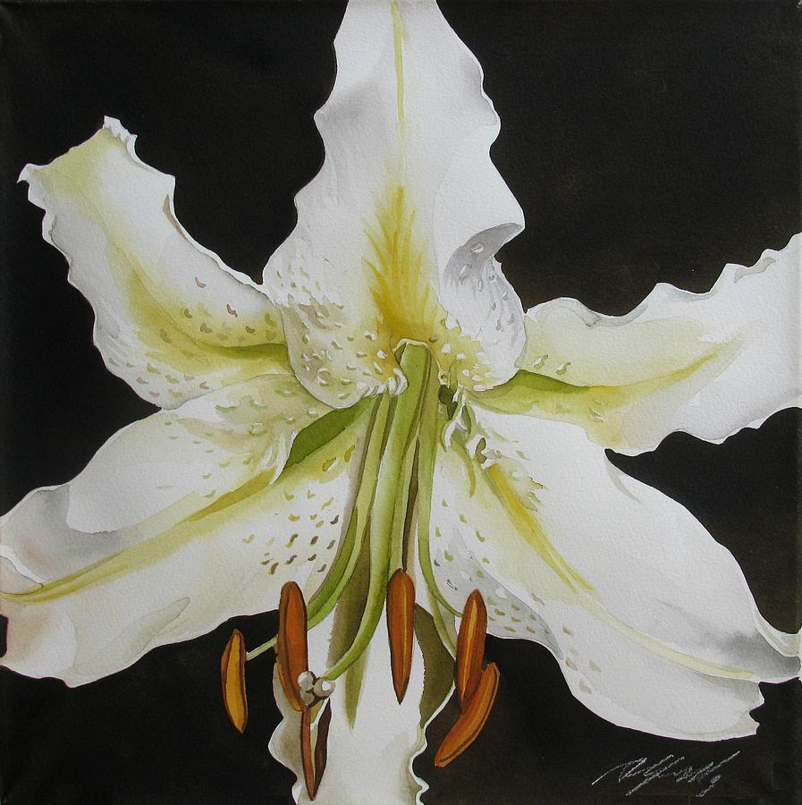 lily in White Painting