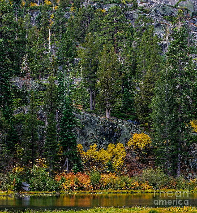 Lily Lake Autumn Photograph - Lily Lake Autumn by Mitch Shindelbower