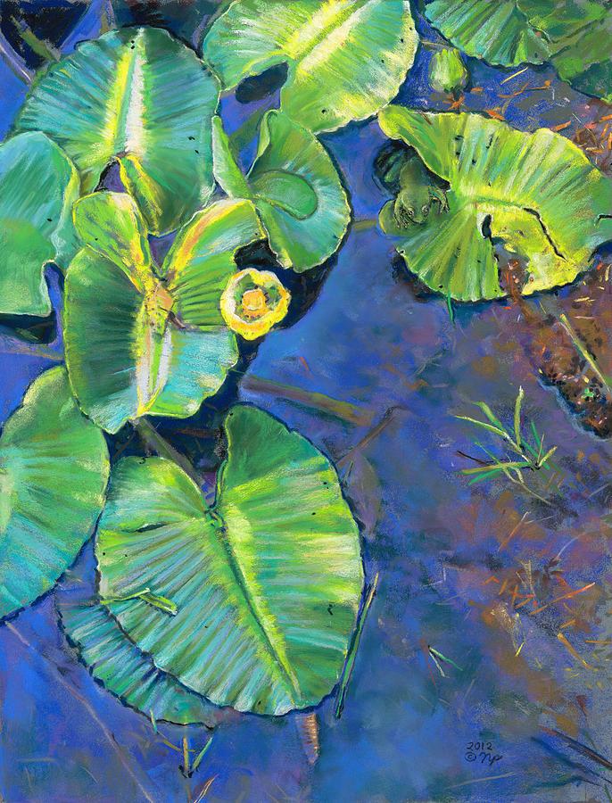 Birdseye Art Studio Painting - Lily Pads by Nick Payne