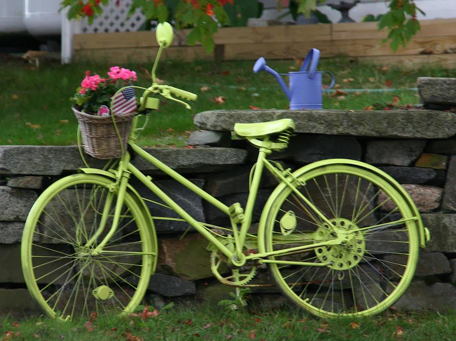 Lime bike