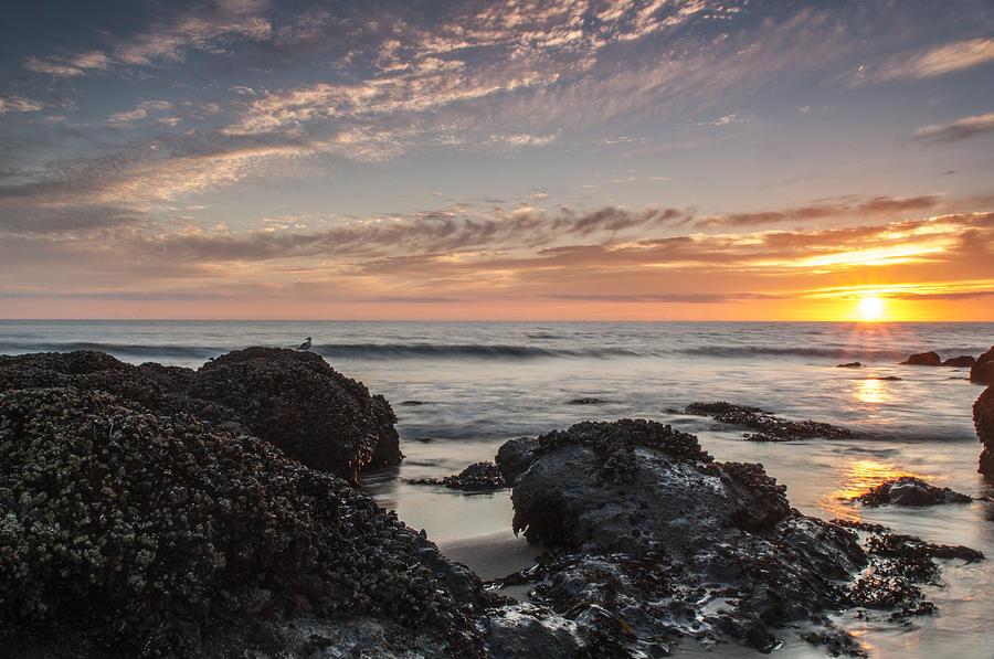 Lincoln City Beach Sunset - Oregon Coast Photograph