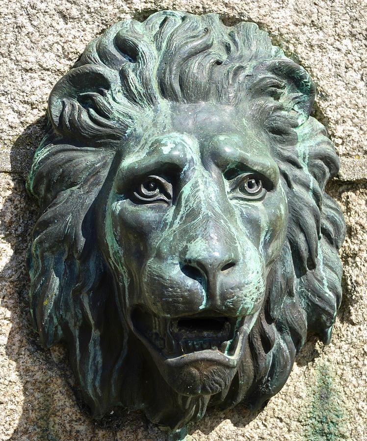 Sculpture Photograph - Lion King by Charlie Brock
