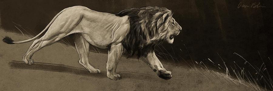 Digital Digital Art - Lion Sketch by Aaron Blaise