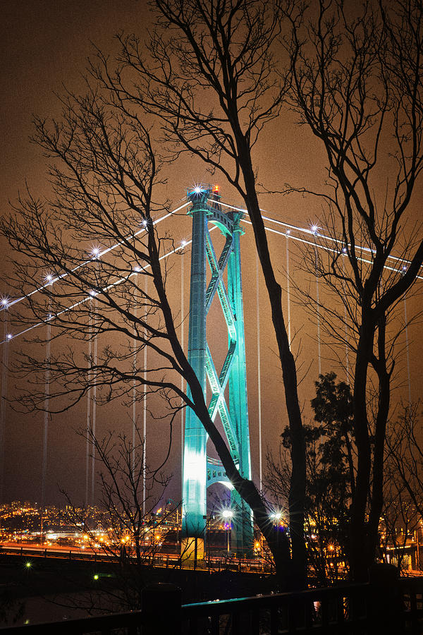 Lions Gate Bridge Photograph
