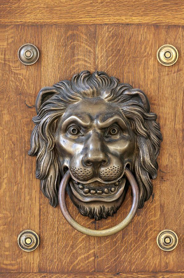 Lion 39 s head door knocker photograph by fernando barozza - Large lion head door knocker ...