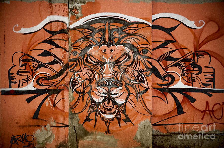 Lions Head Graffiti Photograph