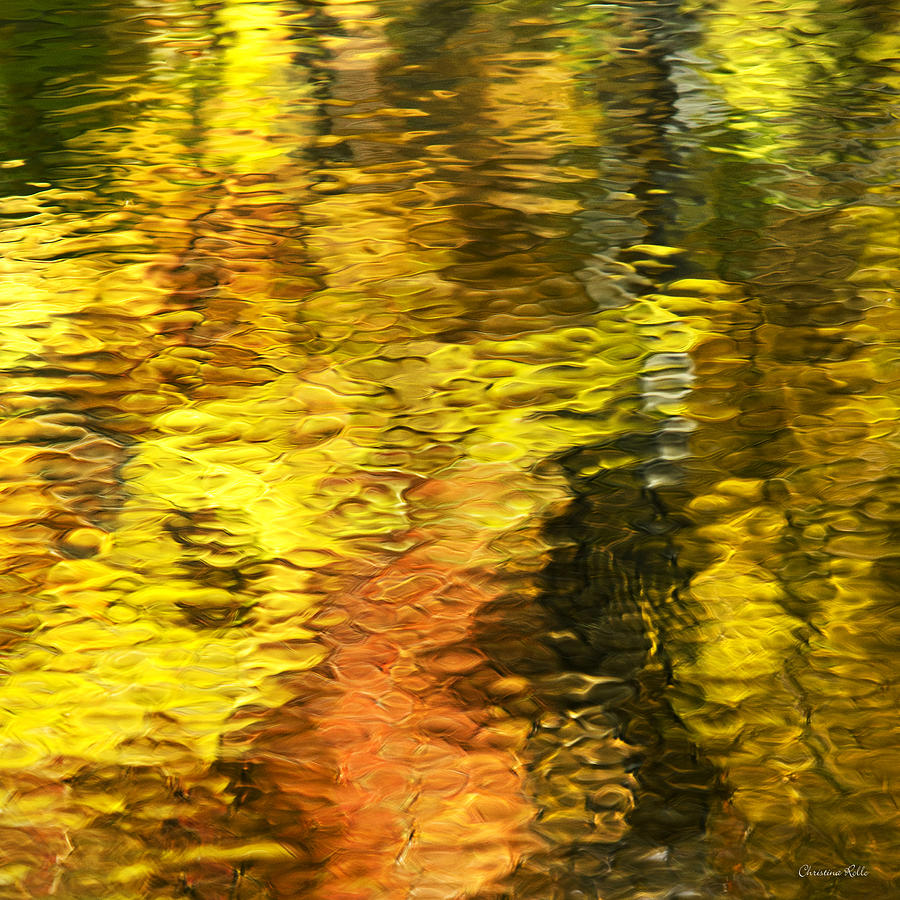 Liquid Gold Abstract Reflection Photograph