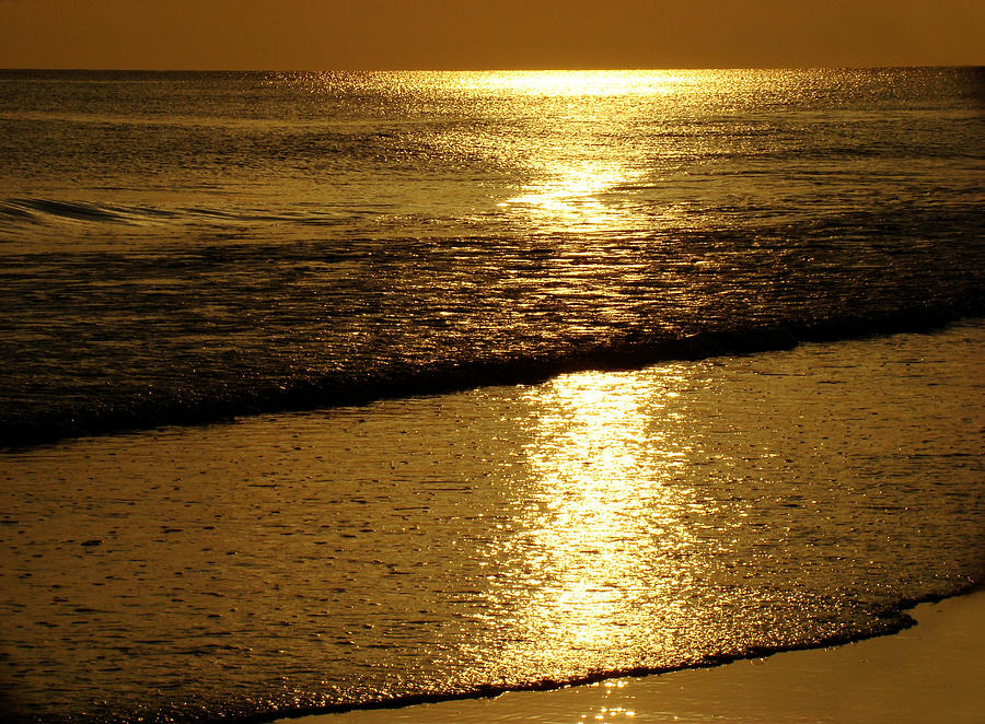 Liquid Gold Photograph  - Liquid Gold Fine Art Print