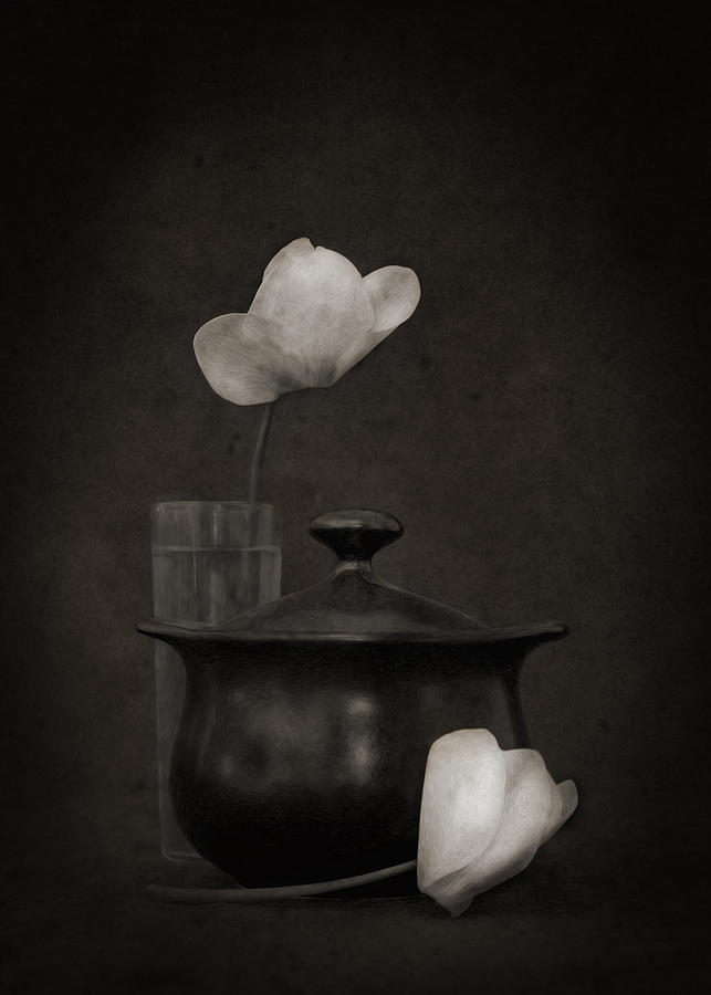 Little Black Pot Photograph  - Little Black Pot Fine Art Print