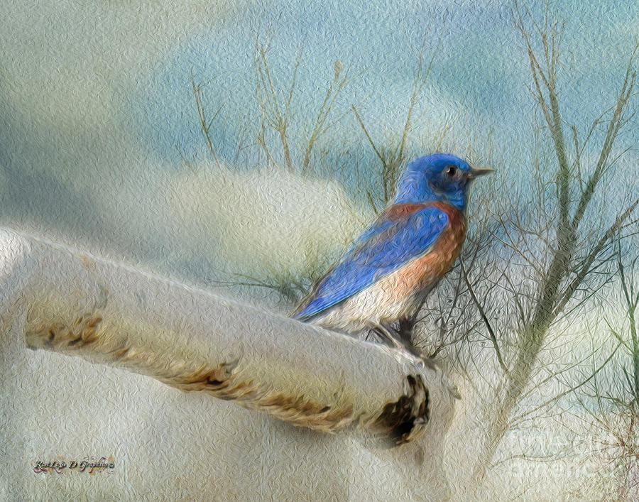 Little Blue Bird Digital Art