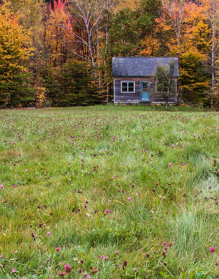 Karen Stephenson Photography Photograph - Little House At Woodlands Edge In New Hampshire by Karen Stephenson