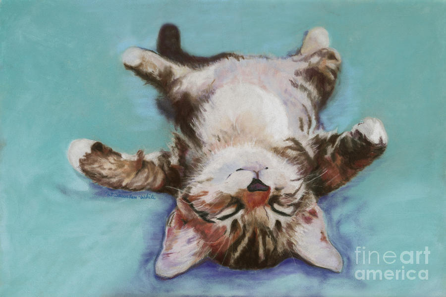 Cat Painting Pastel - Little Napper  by Pat Saunders-White