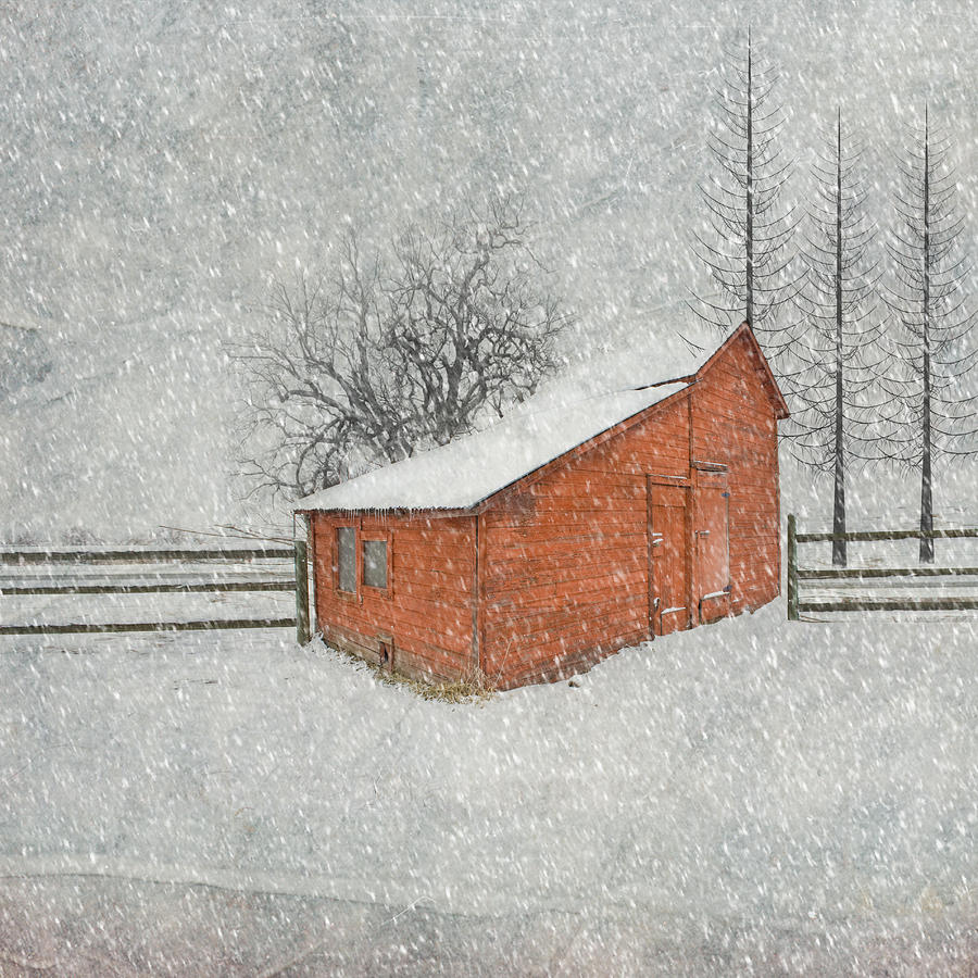 Little Red Barn Photograph