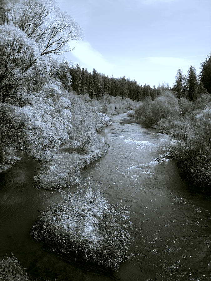 Little Spokane River Beauty Photograph
