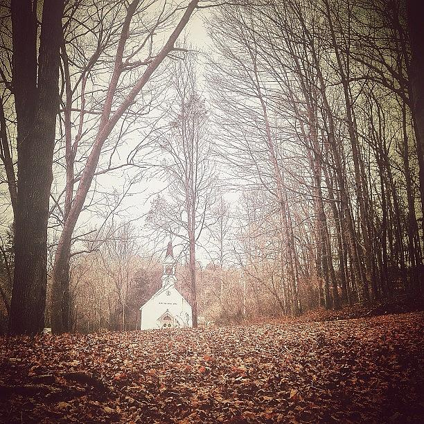 Little White Church In The Woods Photograph  - Little White Church In The Woods Fine Art Print