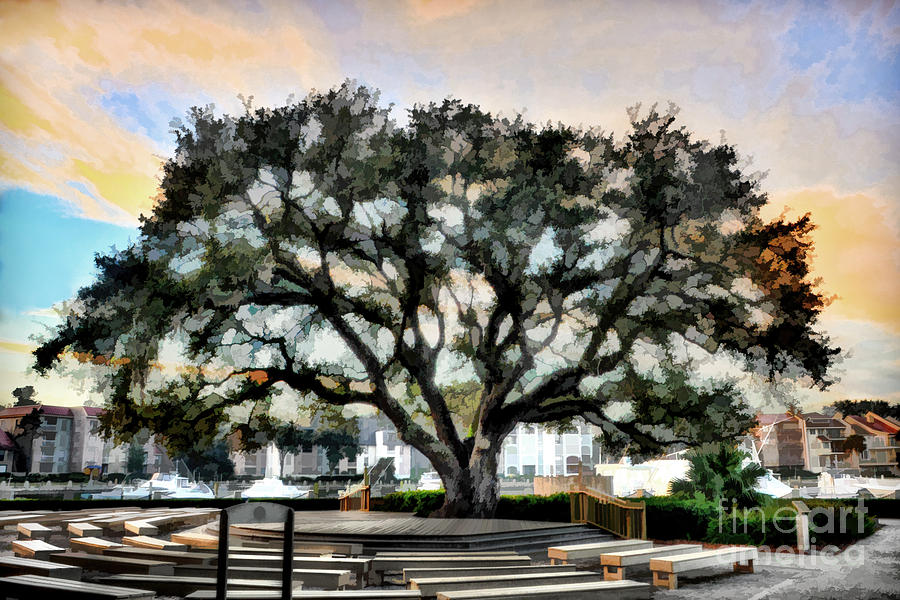 Live Oak Tree Photograph - Live Oak Artistic Trendering by Dan Friend