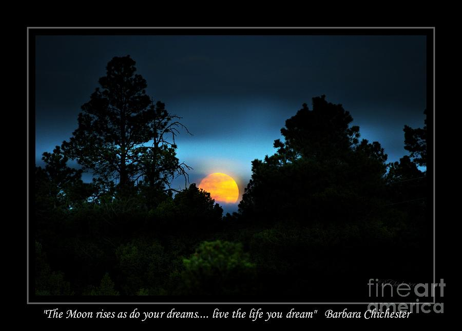 Live The Life You Dream Photograph  - Live The Life You Dream Fine Art Print