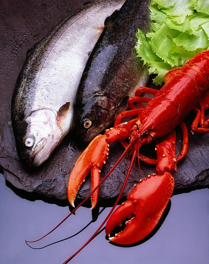Lobster And Trout Photograph