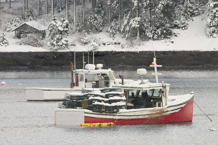 Lobster Boats After Snowstorm In Tenants Harbor Maine Photograph