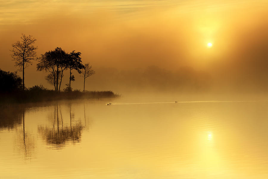 Loch Ard Morning Glow Photograph