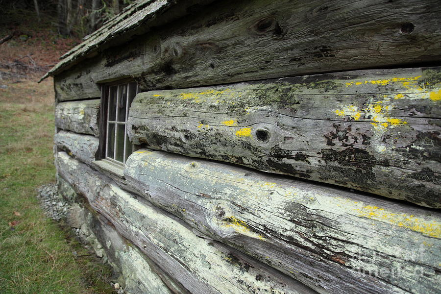 Log Cabin Side Photograph  - Log Cabin Side Fine Art Print