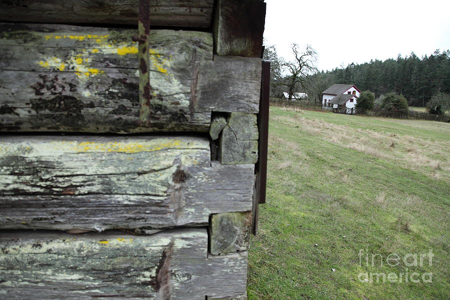 Log House Detail Photograph