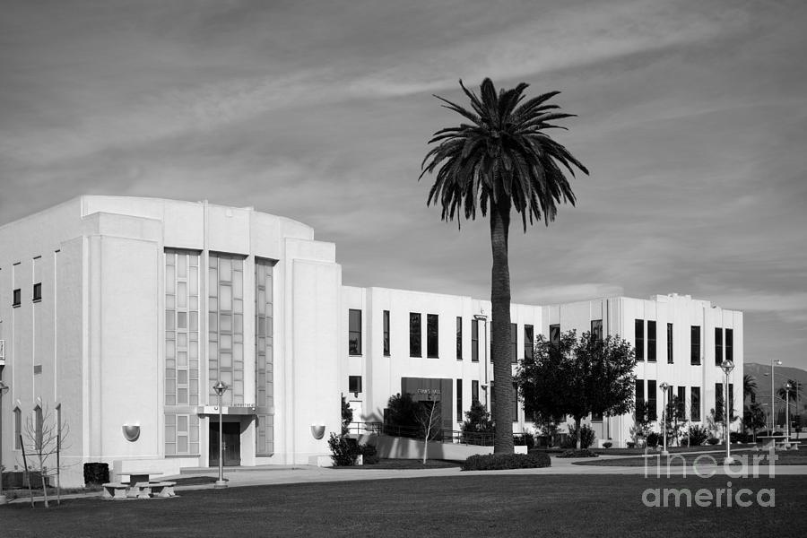 Loma Linda University Library Photograph