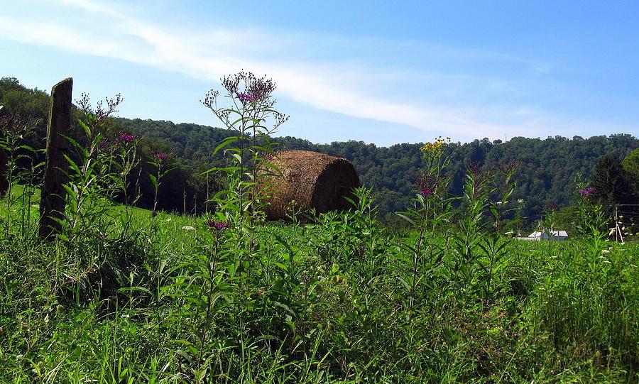 Lone Hay Round Photograph