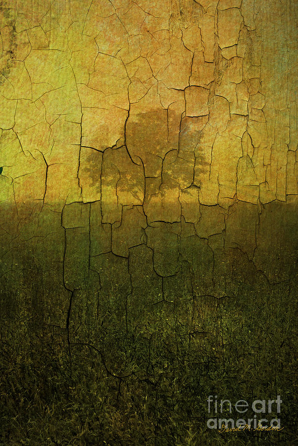 Lone Tree In Meadow -textured Photograph