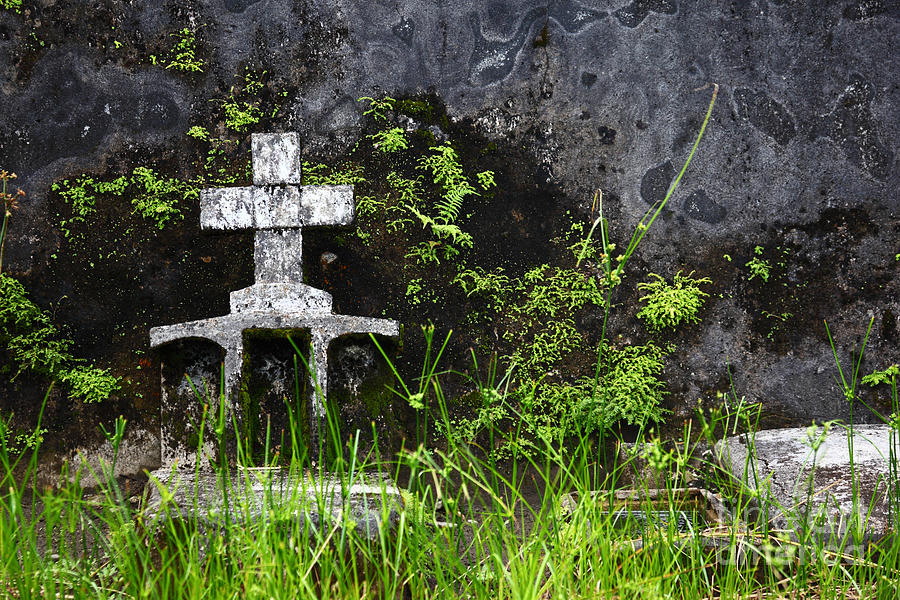 Lonely Grave Photograph  - Lonely Grave Fine Art Print
