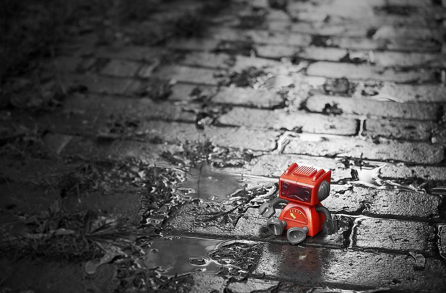 Robot Photograph - Lonely Little Robot by Scott Norris