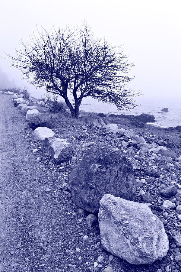 Lonely Road 2