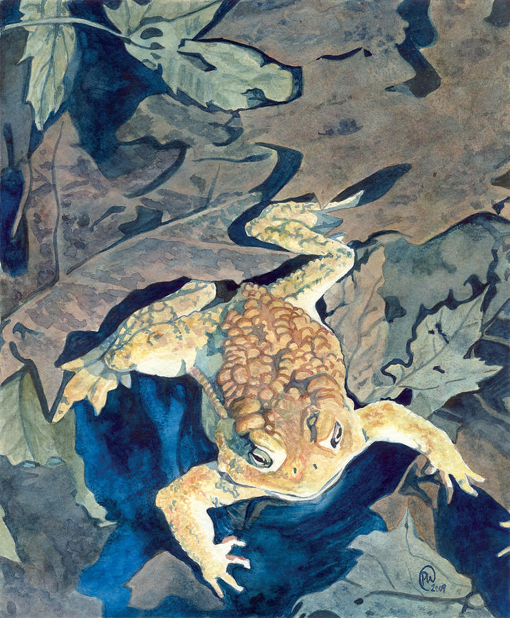 Lonely toad painting by paige wallis - Painting tool avis ...