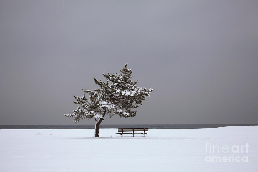Lonesome Winter Photograph  - Lonesome Winter Fine Art Print