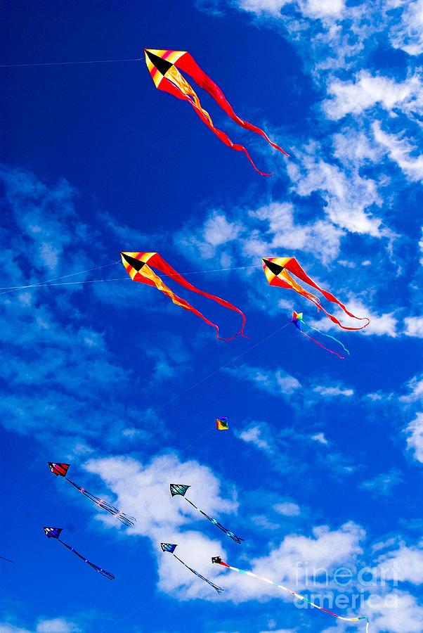 Kite Festival Long Beach Washington
