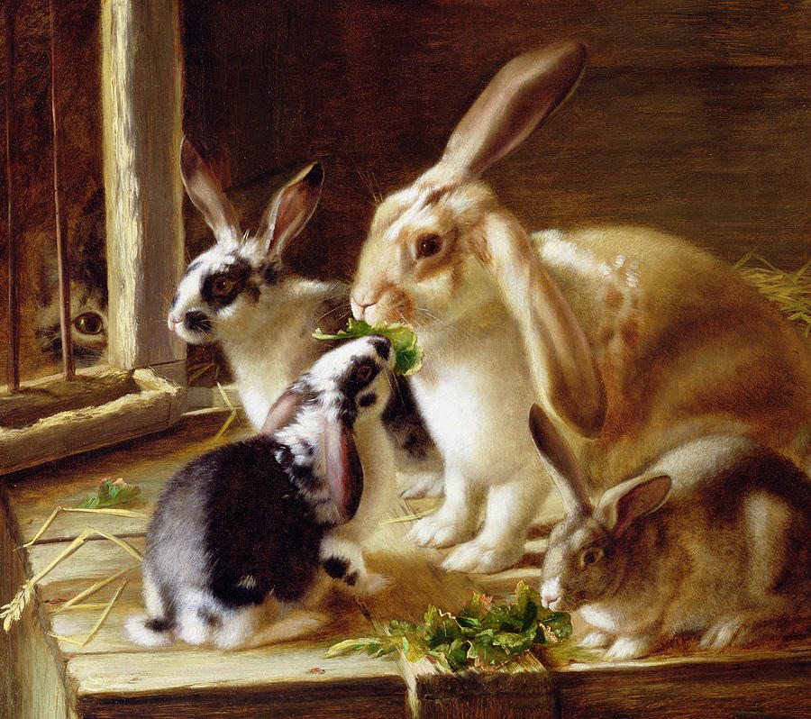 Long-eared Rabbits In A Cage Watched By A Cat Painting
