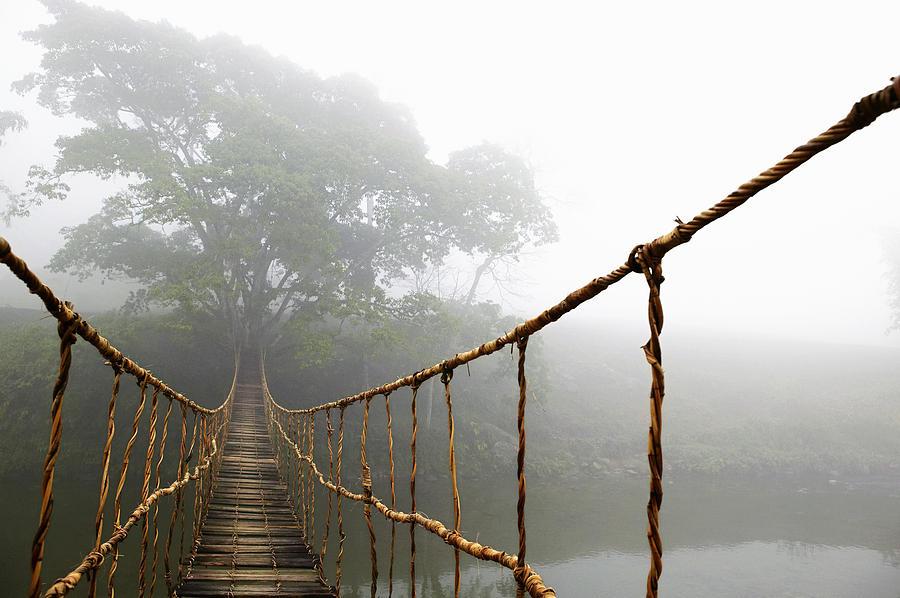 Jungle Journey Bridge Photograph - Long Rope Bridge by Skip Nall