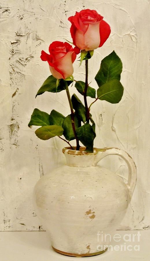 Long Stemmed Red Roses In Pottery Photograph  - Long Stemmed Red Roses In Pottery Fine Art Print