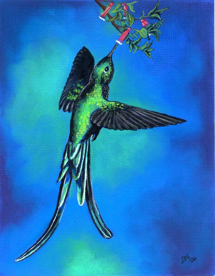Bird Pastel - Long Tail Sylph  by Sherri Strikwerda