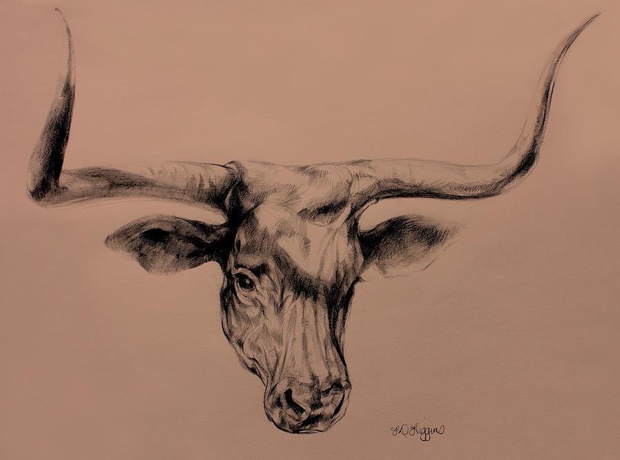 image gallery longhorn bull drawing