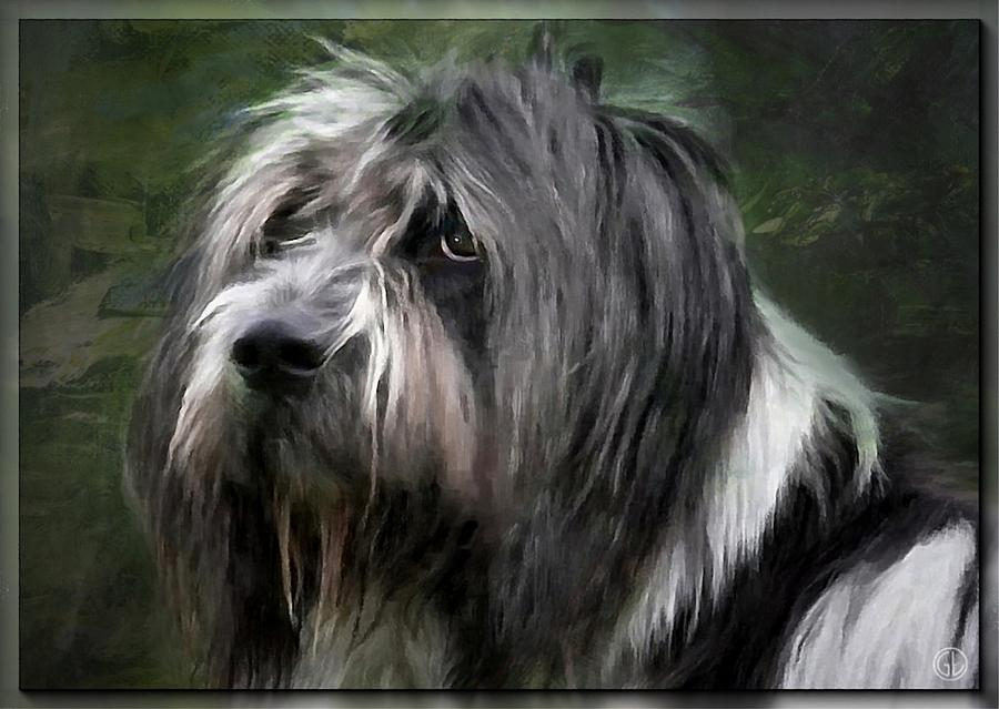Animal. Dog Digital Art - Looking A Little Sad by Gun Legler