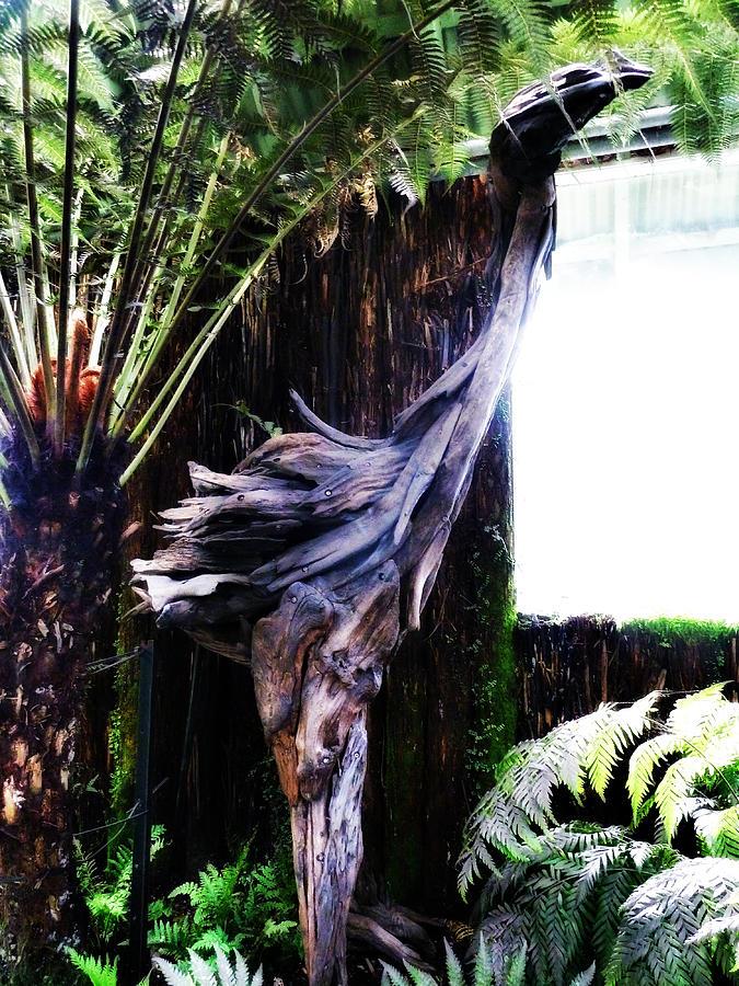 Moa; Hagley; Wood; Wooden; Sculpture; Fern; House; Tall; Park; Leaves; Canterbury; Christchurch; South Island; New Zealand; Nz; Botanical; Gardens; Window; Light; Extinct Photograph - Looking Through The Window Of Extinction by Steve Taylor